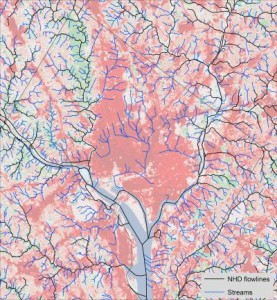 A new map of the Potomac River watershed stream network, including Washington, D.C., significantly improves the information needed for assessing the impact of urbanization on aquatic ecosystems.