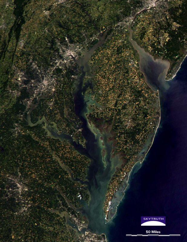 Chesapeake and Delaware Bay sediment & algae bloom July 2014. Courtesy of SkyTruth